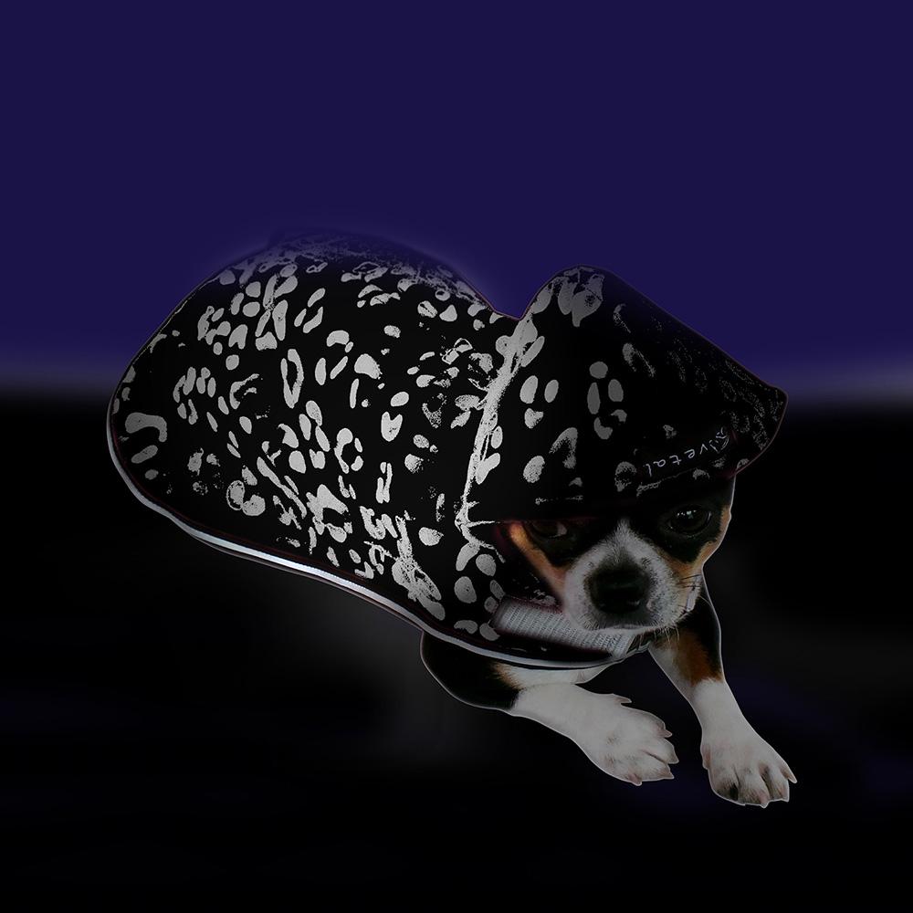 Hundemantel mit Kapuze aus neonpinkem Softshell, leuchtet im Dunklen auch ohne Lichtquelle, innen gefüttert mit weichem Fleece. Fröhlicher Farbtupfer für alle Tage.