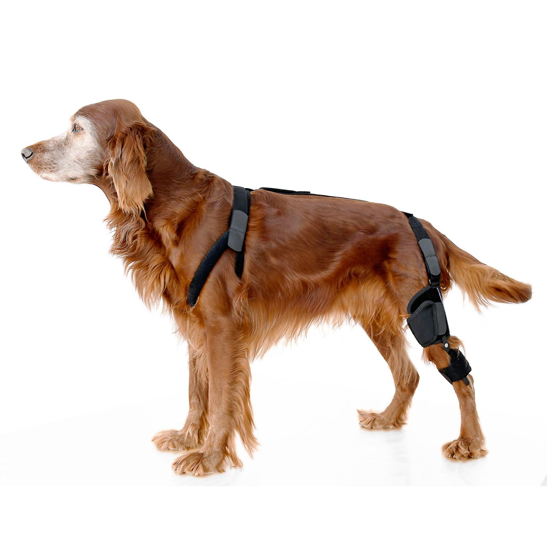 Goni stabil ist eine stabilisierende Knieschiene zur funktionellen Unterstützung bei Gelenkinstabilität, Bänderschwäche und Arthrose